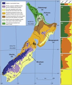 Vegetation of New Zealand 21,000 years ago (Newnham, McGlone, Moar, Wimhurst and Vandergoes 2012)