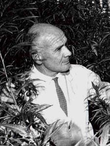 Professor of Botany Geoff Baylis